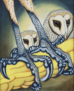 Owl - photograph